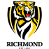 Richmond-Tigers Logo